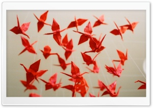 1000 Paper Cranes HD Wide Wallpaper for Widescreen