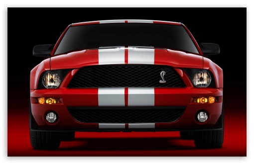 2007 Ford Shelby GT500 Production Red 2 HD wallpaper for Wide 16:10 5:3 Widescreen WHXGA WQXGA WUXGA WXGA WGA ; Standard 4:3 5:4 3:2 Fullscreen UXGA XGA SVGA QSXGA SXGA DVGA HVGA HQVGA devices ( Apple PowerBook G4 iPhone 4 3G 3GS iPod Touch ) ; iPad 1/2/Mini ; Mobile 4:3 5:3 3:2 16:9 5:4 - UXGA XGA SVGA WGA DVGA HVGA HQVGA devices ( Apple PowerBook G4 iPhone 4 3G 3GS iPod Touch ) WQHD QWXGA 1080p 900p 720p QHD nHD QSXGA SXGA ;