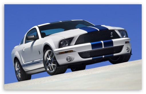 2007 Ford Shelby GT500 Production White 1 ❤ 4K UHD Wallpaper for Wide 16:10 5:3 Widescreen WHXGA WQXGA WUXGA WXGA WGA ; 4K UHD 16:9 Ultra High Definition 2160p 1440p 1080p 900p 720p ; Standard 4:3 5:4 3:2 Fullscreen UXGA XGA SVGA QSXGA SXGA DVGA HVGA HQVGA ( Apple PowerBook G4 iPhone 4 3G 3GS iPod Touch ) ; iPad 1/2/Mini ; Mobile 4:3 5:3 3:2 16:9 5:4 - UXGA XGA SVGA WGA DVGA HVGA HQVGA ( Apple PowerBook G4 iPhone 4 3G 3GS iPod Touch ) 2160p 1440p 1080p 900p 720p QSXGA SXGA ;