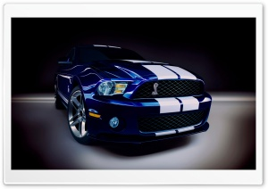 2010 Ford Shelby GT500 HD Wide Wallpaper for Widescreen