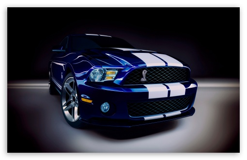 2010 Ford Shelby GT500 HD wallpaper for Wide 16:10 5:3 Widescreen WHXGA WQXGA WUXGA WXGA WGA ; HD 16:9 High Definition WQHD QWXGA 1080p 900p 720p QHD nHD ; Standard 4:3 5:4 3:2 Fullscreen UXGA XGA SVGA QSXGA SXGA DVGA HVGA HQVGA devices ( Apple PowerBook G4 iPhone 4 3G 3GS iPod Touch ) ; iPad 1/2/Mini ; Mobile 4:3 5:3 3:2 16:9 5:4 - UXGA XGA SVGA WGA DVGA HVGA HQVGA devices ( Apple PowerBook G4 iPhone 4 3G 3GS iPod Touch ) WQHD QWXGA 1080p 900p 720p QHD nHD QSXGA SXGA ;