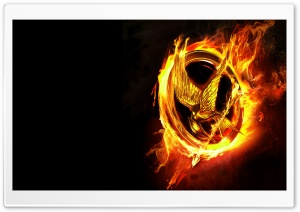 2012 The Hunger Games HD Wide Wallpaper for Widescreen