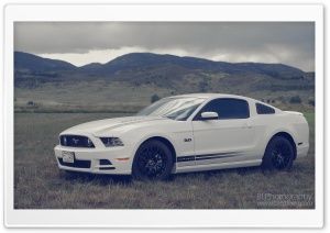 2013 Ford Mustang HD Wide Wallpaper for Widescreen