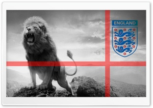 3 Lions Football HD Wide Wallpaper for Widescreen