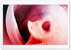 3D Abstract Shell Ultra HD Wallpaper for 4K UHD Widescreen desktop, tablet & smartphone