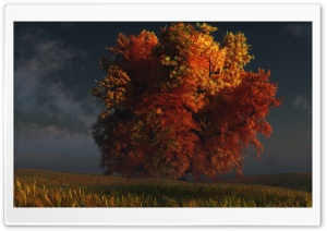 3D Autumn Tree HD Wide Wallpaper for 4K UHD Widescreen desktop & smartphone
