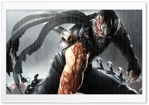 .Ninja Gaiden 3. HD Wide Wallpaper for 4K UHD Widescreen desktop & smartphone