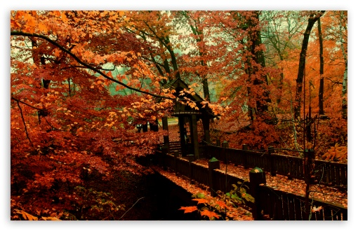 A Bridge to Autumn HD wallpaper for Wide 16:10 5:3 Widescreen WHXGA WQXGA WUXGA WXGA WGA ; HD 16:9 High Definition WQHD QWXGA 1080p 900p 720p QHD nHD ; UHD 16:9 WQHD QWXGA 1080p 900p 720p QHD nHD ; Standard 4:3 5:4 3:2 Fullscreen UXGA XGA SVGA QSXGA SXGA DVGA HVGA HQVGA devices ( Apple PowerBook G4 iPhone 4 3G 3GS iPod Touch ) ; Tablet 1:1 ; iPad 1/2/Mini ; Mobile 4:3 5:3 3:2 16:9 5:4 - UXGA XGA SVGA WGA DVGA HVGA HQVGA devices ( Apple PowerBook G4 iPhone 4 3G 3GS iPod Touch ) WQHD QWXGA 1080p 900p 720p QHD nHD QSXGA SXGA ; Dual 4:3 5:4 UXGA XGA SVGA QSXGA SXGA ;
