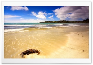 A Day At The Beach HD Wide Wallpaper for Widescreen