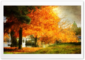 A Dreamy Fall HD Wide Wallpaper for Widescreen