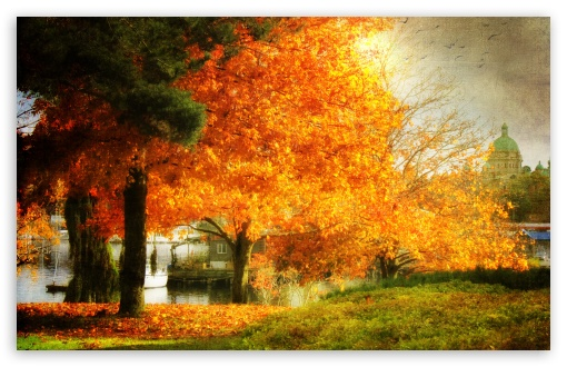 Download A Dreamy Fall HD Wallpaper