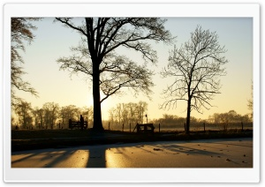 A Frozen Pond Near The Kromme Rijn River HD Wide Wallpaper for Widescreen