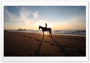 A Horse Ride On The Beach HD Wide Wallpaper for 4K UHD Widescreen desktop & smartphone