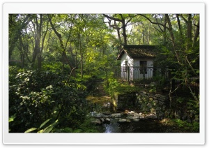 A Little House In Hangzhou HD Wide Wallpaper for Widescreen