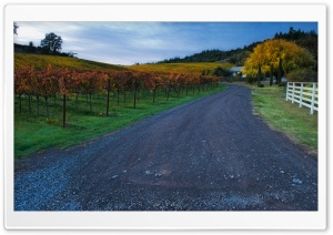 A Private Road HD Wide Wallpaper for Widescreen