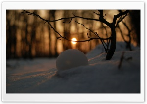 A Snowball In Snow HD Wide Wallpaper for Widescreen