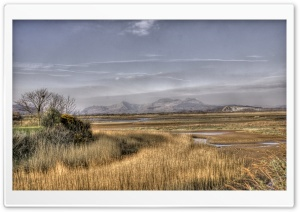 A View From Porthmadog HD Wide Wallpaper for Widescreen