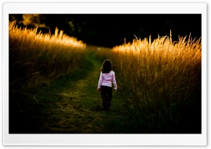A Walk In Nature HD Wide Wallpaper for Widescreen