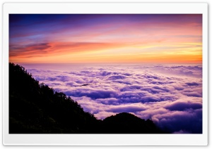 Above The Clouds HD Wide Wallpaper for 4K UHD Widescreen desktop & smartphone