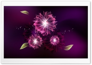 Abstract Flowers HD Wide Wallpaper for Widescreen