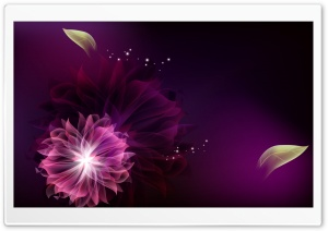 Abstract Flowers 2 HD Wide Wallpaper for Widescreen