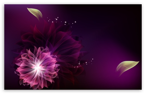 Abstract Flowers 2 HD wallpaper for Wide 16:10 5:3 Widescreen WHXGA WQXGA WUXGA WXGA WGA ; HD 16:9 High Definition WQHD QWXGA 1080p 900p 720p QHD nHD ; Standard 5:4 3:2 Fullscreen QSXGA SXGA DVGA HVGA HQVGA devices ( Apple PowerBook G4 iPhone 4 3G 3GS iPod Touch ) ; Tablet 1:1 ; iPad 1/2/Mini ; Mobile 4:3 5:3 3:2 16:9 5:4 - UXGA XGA SVGA WGA DVGA HVGA HQVGA devices ( Apple PowerBook G4 iPhone 4 3G 3GS iPod Touch ) WQHD QWXGA 1080p 900p 720p QHD nHD QSXGA SXGA ;