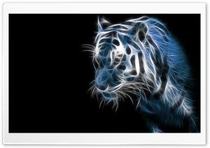 Abstract Tiger HD Wide Wallpaper for Widescreen