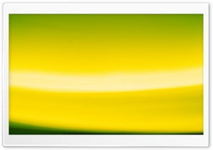 Abstract Yellow And Green HD Wide Wallpaper for Widescreen