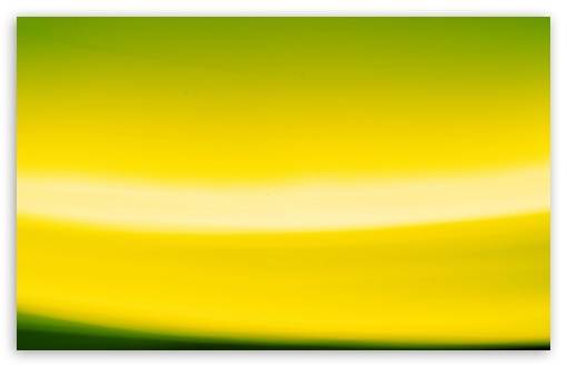 Abstract Yellow And Green HD wallpaper for Wide 16:10 5:3 Widescreen WHXGA WQXGA WUXGA WXGA WGA ; HD 16:9 High Definition WQHD QWXGA 1080p 900p 720p QHD nHD ; Standard 4:3 5:4 3:2 Fullscreen UXGA XGA SVGA QSXGA SXGA DVGA HVGA HQVGA devices ( Apple PowerBook G4 iPhone 4 3G 3GS iPod Touch ) ; iPad 1/2/Mini ; Mobile 4:3 5:3 3:2 16:9 5:4 - UXGA XGA SVGA WGA DVGA HVGA HQVGA devices ( Apple PowerBook G4 iPhone 4 3G 3GS iPod Touch ) WQHD QWXGA 1080p 900p 720p QHD nHD QSXGA SXGA ;