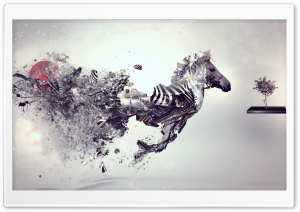 Abstract Zebra HD Wide Wallpaper for Widescreen