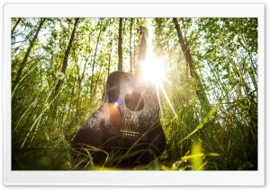 Acoustic Guitar HD Wide Wallpaper for 4K UHD Widescreen desktop & smartphone