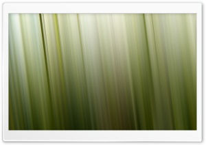 Aero Green 4 HD Wide Wallpaper for Widescreen
