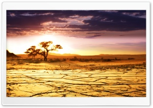African Landscape HD Wide Wallpaper for Widescreen