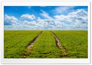 Agriculture Field Springtime HD Wide Wallpaper for Widescreen