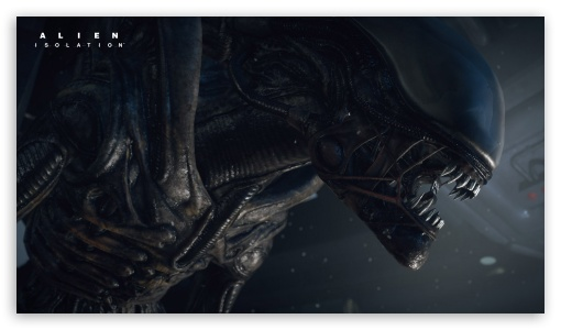 Alien Isolation HD wallpaper for HD 16:9 High Definition WQHD QWXGA 1080p 900p 720p QHD nHD ; Tablet 1:1 ; iPad 1/2/Mini ; Mobile 4:3 5:3 3:2 16:9 - UXGA XGA SVGA WGA DVGA HVGA HQVGA devices ( Apple PowerBook G4 iPhone 4 3G 3GS iPod Touch ) WQHD QWXGA 1080p 900p 720p QHD nHD ;