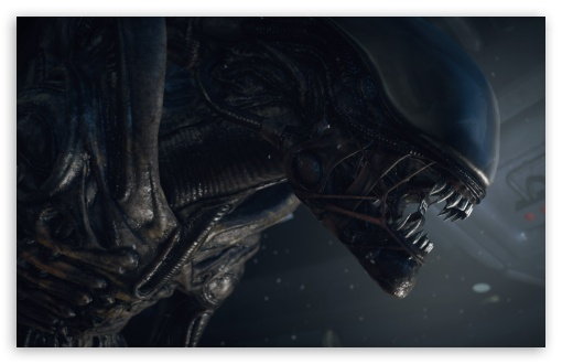 Alien Isolation Game ❤ 4K UHD Wallpaper for Wide 16:10 5:3 Widescreen WHXGA WQXGA WUXGA WXGA WGA ; 4K UHD 16:9 Ultra High Definition 2160p 1440p 1080p 900p 720p ; Standard 4:3 5:4 3:2 Fullscreen UXGA XGA SVGA QSXGA SXGA DVGA HVGA HQVGA ( Apple PowerBook G4 iPhone 4 3G 3GS iPod Touch ) ; Tablet 1:1 ; iPad 1/2/Mini ; Mobile 4:3 5:3 3:2 16:9 5:4 - UXGA XGA SVGA WGA DVGA HVGA HQVGA ( Apple PowerBook G4 iPhone 4 3G 3GS iPod Touch ) 2160p 1440p 1080p 900p 720p QSXGA SXGA ;