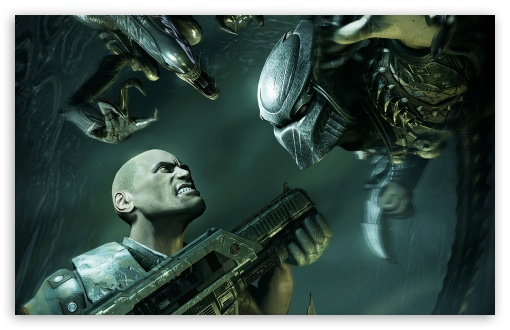 Download Aliens Vs Predator HD Wallpaper
