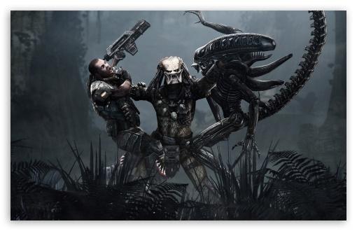 Aliens vs predator 4k hd desktop wallpaper for 4k ultra hd tv download aliens vs predator hd wallpaper voltagebd Choice Image