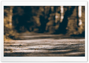 Alley Bokeh HD Wide Wallpaper for Widescreen