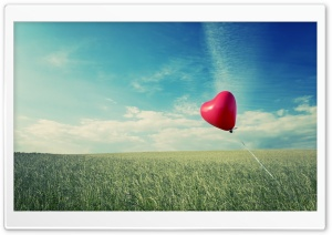 Alone Heart Flying HD Wide Wallpaper for Widescreen