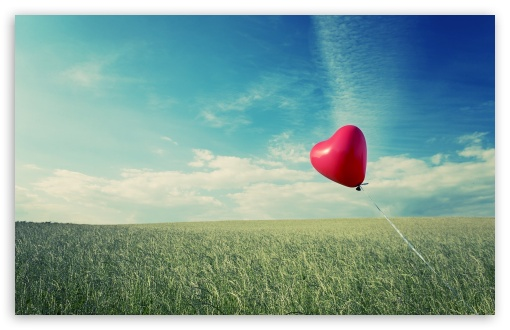 Alone Heart Flying HD wallpaper for Standard 4:3 5:4 Fullscreen UXGA XGA SVGA QSXGA SXGA ; Wide 16:10 5:3 Widescreen WHXGA WQXGA WUXGA WXGA WGA ; HD 16:9 High Definition WQHD QWXGA 1080p 900p 720p QHD nHD ; Other 3:2 DVGA HVGA HQVGA devices ( Apple PowerBook G4 iPhone 4 3G 3GS iPod Touch ) ; Mobile VGA WVGA iPhone iPad PSP Phone - VGA QVGA Smartphone ( PocketPC GPS iPod Zune BlackBerry HTC Samsung LG Nokia Eten Asus ) WVGA WQVGA Smartphone ( HTC Samsung Sony Ericsson LG Vertu MIO ) HVGA Smartphone ( Apple iPhone iPod BlackBerry HTC Samsung Nokia ) Sony PSP Zune HD Zen ; Tablet 2 ;