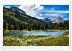 Along the Slate River, Crested Butte, Colorado HD Wide Wallpaper for Widescreen