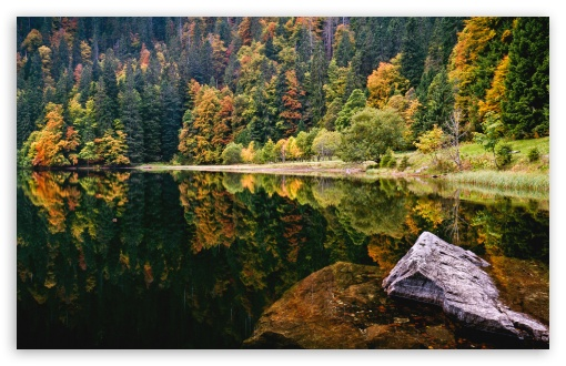 Amazing Autumn Lake View HD wallpaper for Wide 16:10 5:3 Widescreen WHXGA WQXGA WUXGA WXGA WGA ; HD 16:9 High Definition WQHD QWXGA 1080p 900p 720p QHD nHD ; Standard 4:3 5:4 3:2 Fullscreen UXGA XGA SVGA QSXGA SXGA DVGA HVGA HQVGA devices ( Apple PowerBook G4 iPhone 4 3G 3GS iPod Touch ) ; Tablet 1:1 ; iPad 1/2/Mini ; Mobile 4:3 5:3 3:2 16:9 5:4 - UXGA XGA SVGA WGA DVGA HVGA HQVGA devices ( Apple PowerBook G4 iPhone 4 3G 3GS iPod Touch ) WQHD QWXGA 1080p 900p 720p QHD nHD QSXGA SXGA ;