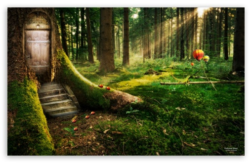 Amazing Free Quality Enchanted Forest 3d Ultra Hd Desktop