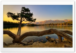 Amazing View Of Lake Ultra HD Wallpaper for 4K UHD Widescreen desktop, tablet & smartphone