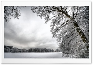 Amazing Winter Landscape HD Wide Wallpaper for Widescreen