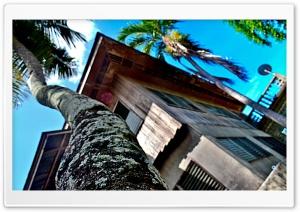 Ancestral House HD Wide Wallpaper for 4K UHD Widescreen desktop & smartphone