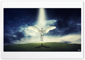 Angel HD Wide Wallpaper for Widescreen