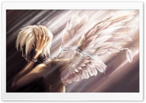 Angel Anime HD Wide Wallpaper for Widescreen
