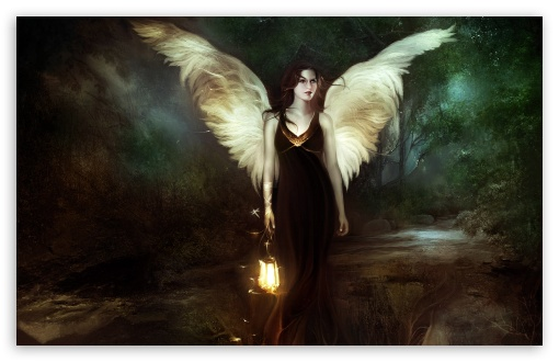 Angel Of The Night HD wallpaper for Wide 16:10 5:3 Widescreen WHXGA WQXGA WUXGA WXGA WGA ; HD 16:9 High Definition WQHD QWXGA 1080p 900p 720p QHD nHD ; Standard 4:3 5:4 3:2 Fullscreen UXGA XGA SVGA QSXGA SXGA DVGA HVGA HQVGA devices ( Apple PowerBook G4 iPhone 4 3G 3GS iPod Touch ) ; Tablet 1:1 ; iPad 1/2/Mini ; Mobile 4:3 5:3 3:2 16:9 5:4 - UXGA XGA SVGA WGA DVGA HVGA HQVGA devices ( Apple PowerBook G4 iPhone 4 3G 3GS iPod Touch ) WQHD QWXGA 1080p 900p 720p QHD nHD QSXGA SXGA ;